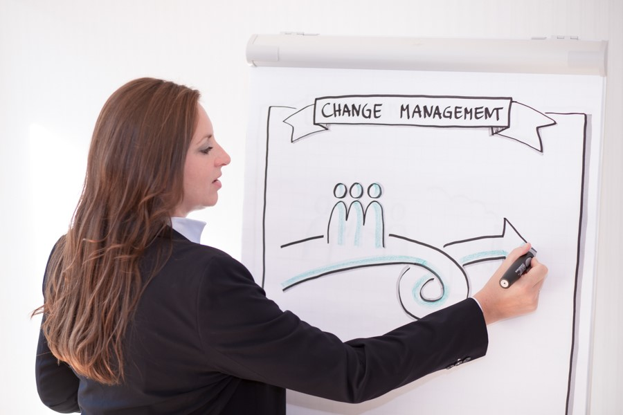 Change Management - Consulting Coaching